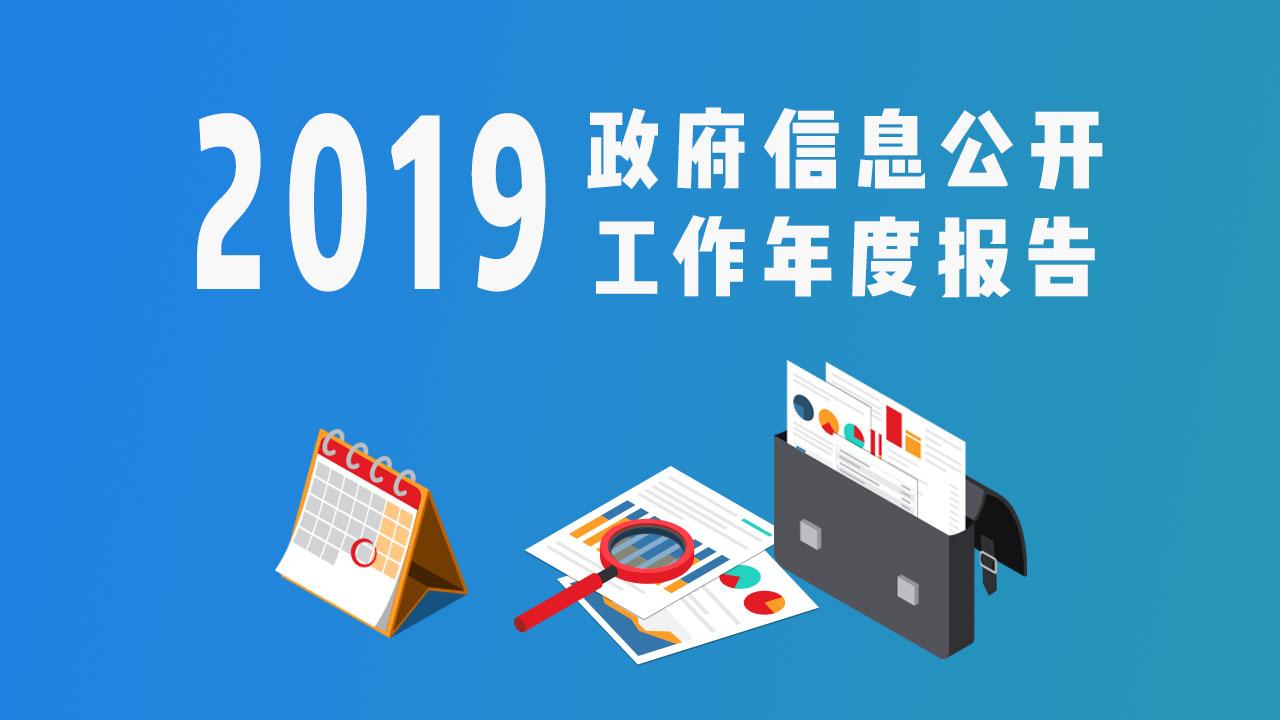 2019政务信息公开工作报告